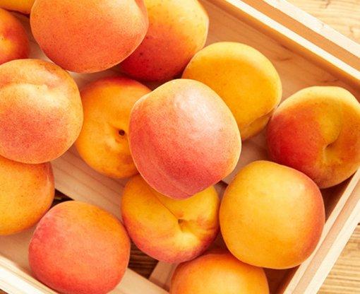Recepten met abrikozen